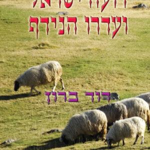 רועה ישראל ועדרו הנידף